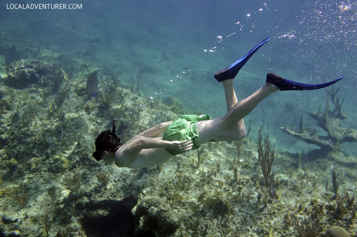 Snorkeling Turks and Caicos with Island Vibes Tours.