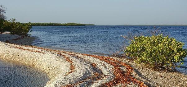 Parque Nacional do Delta do Saloum