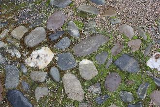 Photo: check out those rocks