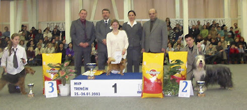 Photo: INT Show Trencin, SK 2nd place in competition JUNIOR HANDLER OF SLOVAKIA 2002