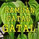 Ramuan Salep Gatal Gatal Dan Ramuan Dalam Gatal Download on Windows