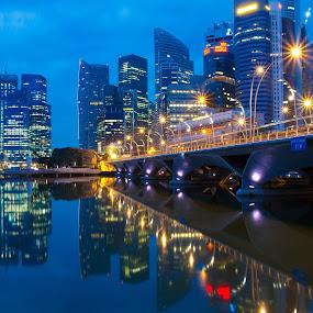 Reflections at dawn by Richard Amar - City,  Street & Park  Skylines ( star bursts, skyline, dawn, twilight, reflections, bridge )