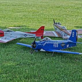 Warbirds by Wendy Alley - Artistic Objects Toys (  )