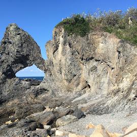 Australia Rock at Narooma by Dawn Simpson - Landscapes Caves & Formations ( australia rock, rock formation, seals, australia, narooma tourism, whales, south coast )