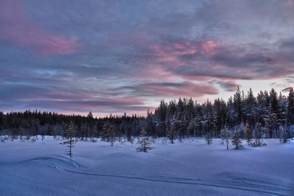 Lapland Sunset di Nemeth