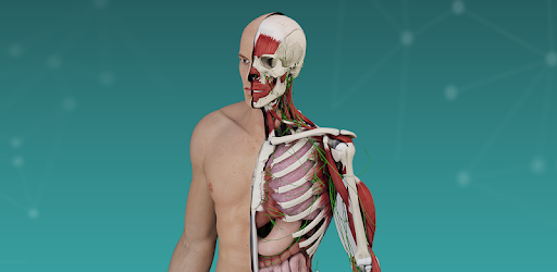 Complete Anatomy Platform 2020 - Apps on Google Play