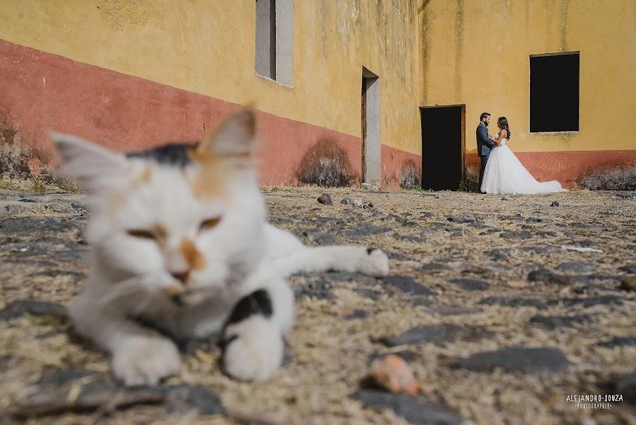 Wedding photographer Alejandro Souza (alejandrosouza). Photo of 22.07.2016