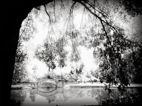 Photo: Infrared photo of a bridge over a pond and under drooping boughs at Eastwood Park in Dayton, Ohio.