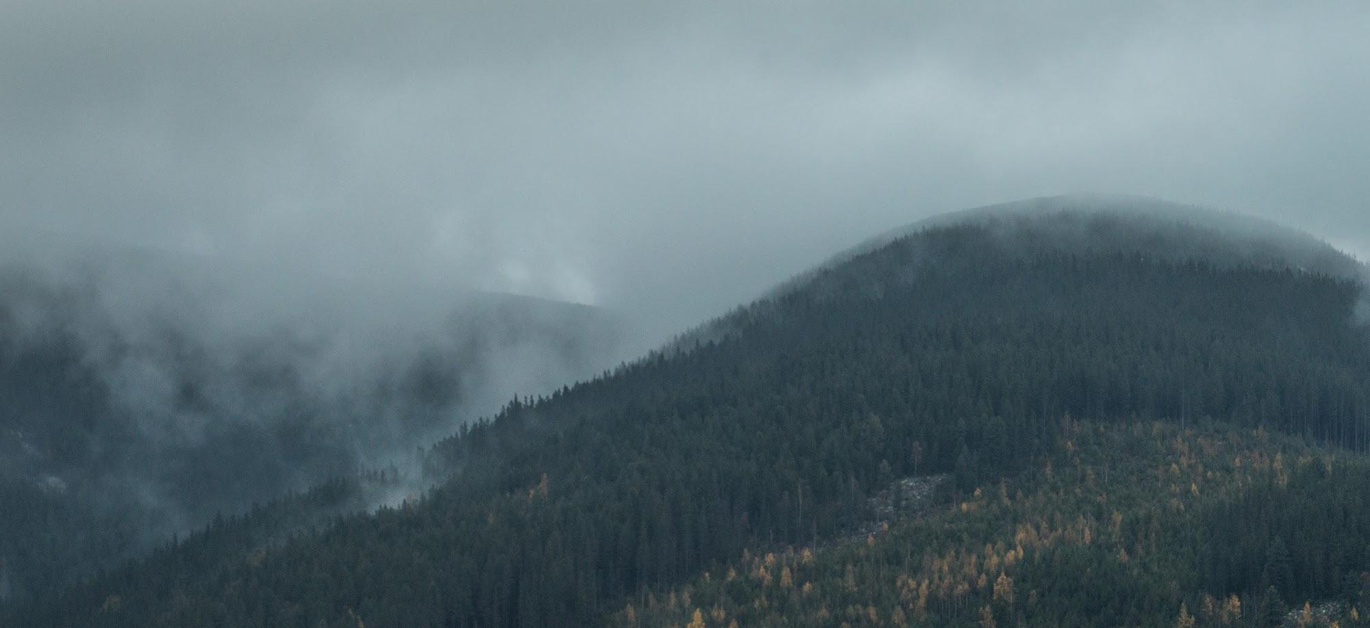 Аршиця, туман