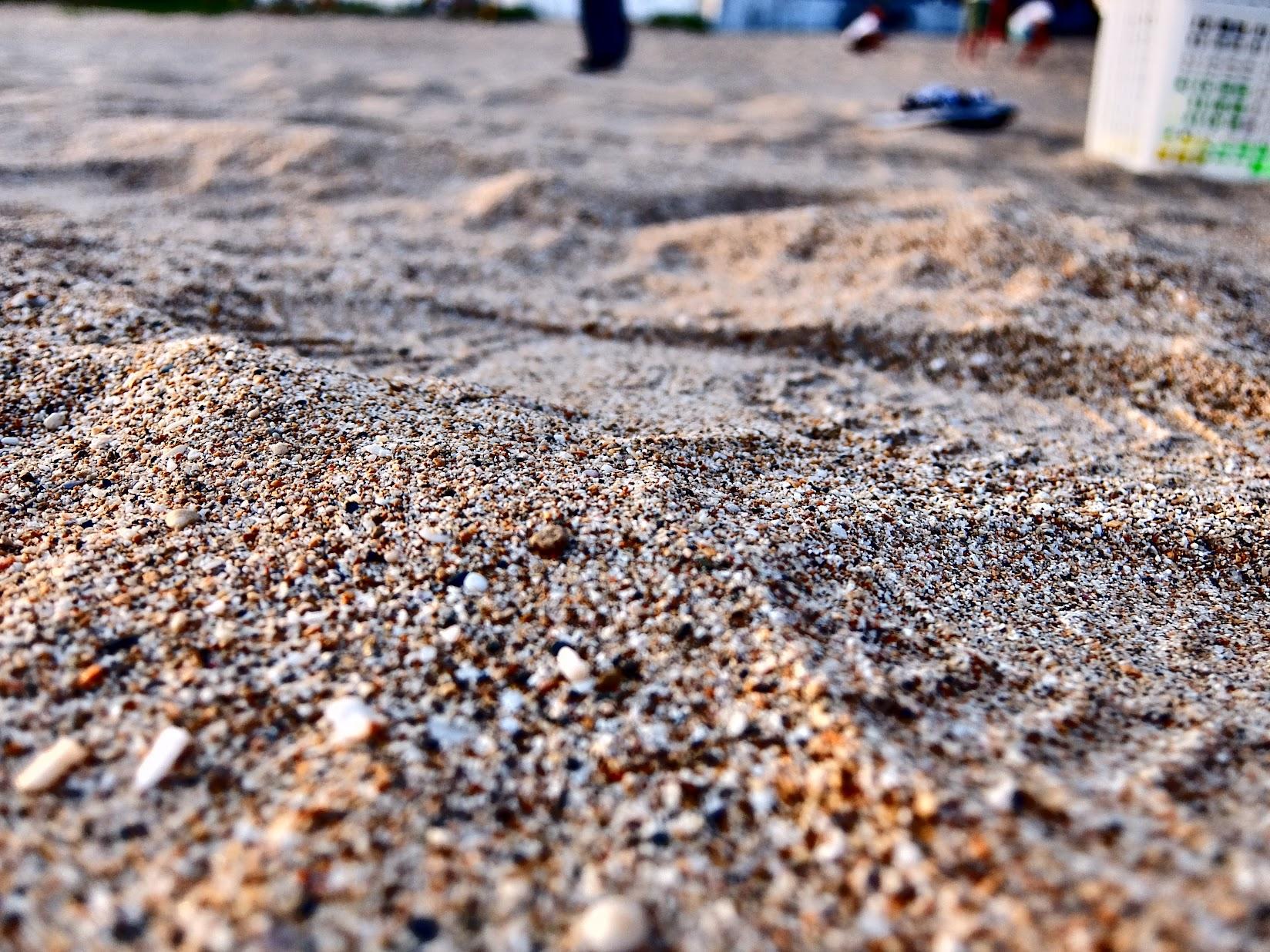 傍晚的沙子,帶著一點水分,冰冰涼涼的,比起早上的沙子還要獲得小孩子青睞..