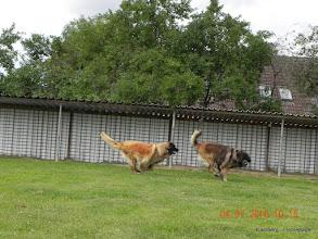 Photo: Diras rechts & Eske