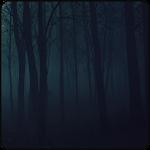 Forest Serene CM12.X Theme v1.1