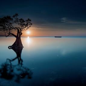 Mangrove by Agung Hendramawan - Landscapes Sunsets & Sunrises ( #sunset, #sumba, #nature, #landscape, #landscapephotography, #beach )