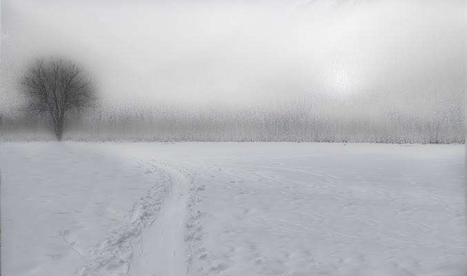 Un altro inverno tornerà domani / cadrà altra neve a consolare i campi di Saltini Rino