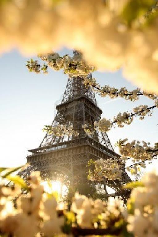 Весна во Франции, что делать весной во франции, Сезоны во Франции, погода во Франции, лучший сезон для поездки во Францию, времена года Франция, когда лучше поехать во Францию, зима во Франции, весна во Франции, лето во Франции, осень во Франции, куда лучше поехать во Францию в декабре, куда лучше поехать во Францию в январе, куда лучше поехать во Францию в феврале, куда лучше поехать во Францию в марте, куда лучше поехать во Францию в апреле, куда лучше поехать во Францию в мае, куда лучше поехать во Францию в июне, куда лучше поехать во Францию в июле, куда лучше поехать во Францию в августе, куда лучше поехать во Францию в сентябре, куда лучше поехать во Францию в октябре, куда лучше поехать во Францию в ноябре, времена года во Франции, климат Франции, лучшее время для поездки во Францию