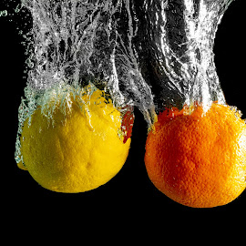 lemon and orange splash by Burdell Edwin - Abstract Water Drops & Splashes ( oranges, seed, high speed, peel, black, yellow, lemons, water, orange, lemon, rind, splash, high speed photography )