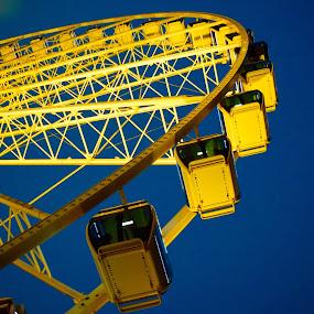 Ferris Wheel by Michelle Bergeson - City,  Street & Park  Amusement Parks ( blue, amusement ride, night, vibrant, yellow,  )