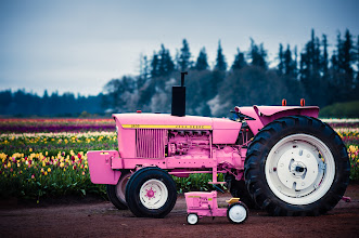Photo: Pink Deeres  Oh man, looks like someone's been busy since last tulip season. There's a baby tractor at the Wooden Shoe Tulip Farm.  #tractorshavebabies   Prints available:http://bit.ly/1iltfVi