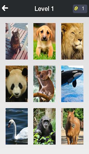 Animal Quiz - 動物を推測