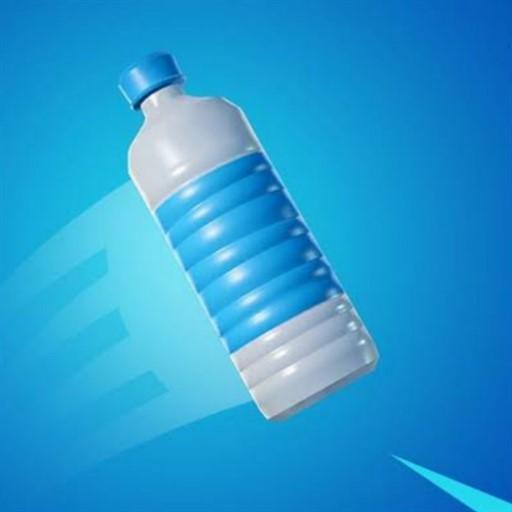Great Flip The Bottle