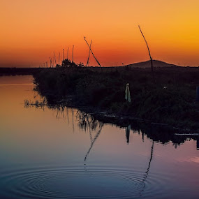 Fishery, Danube Delta by Tomita Savastre - Landscapes Waterscapes ( sunset, reflections, lake )