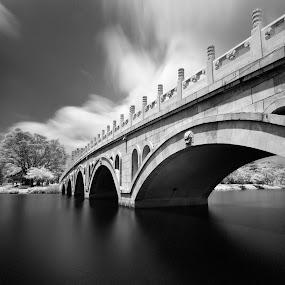 by Richard Amar - City,  Street & Park  City Parks ( canon gps receiver gp-e2, black & white, fine art b&w, hoya r72, long exposure, canon eos 5d mark iii, bridge, canon ef17-40mm f/4l usm, chinese garden )