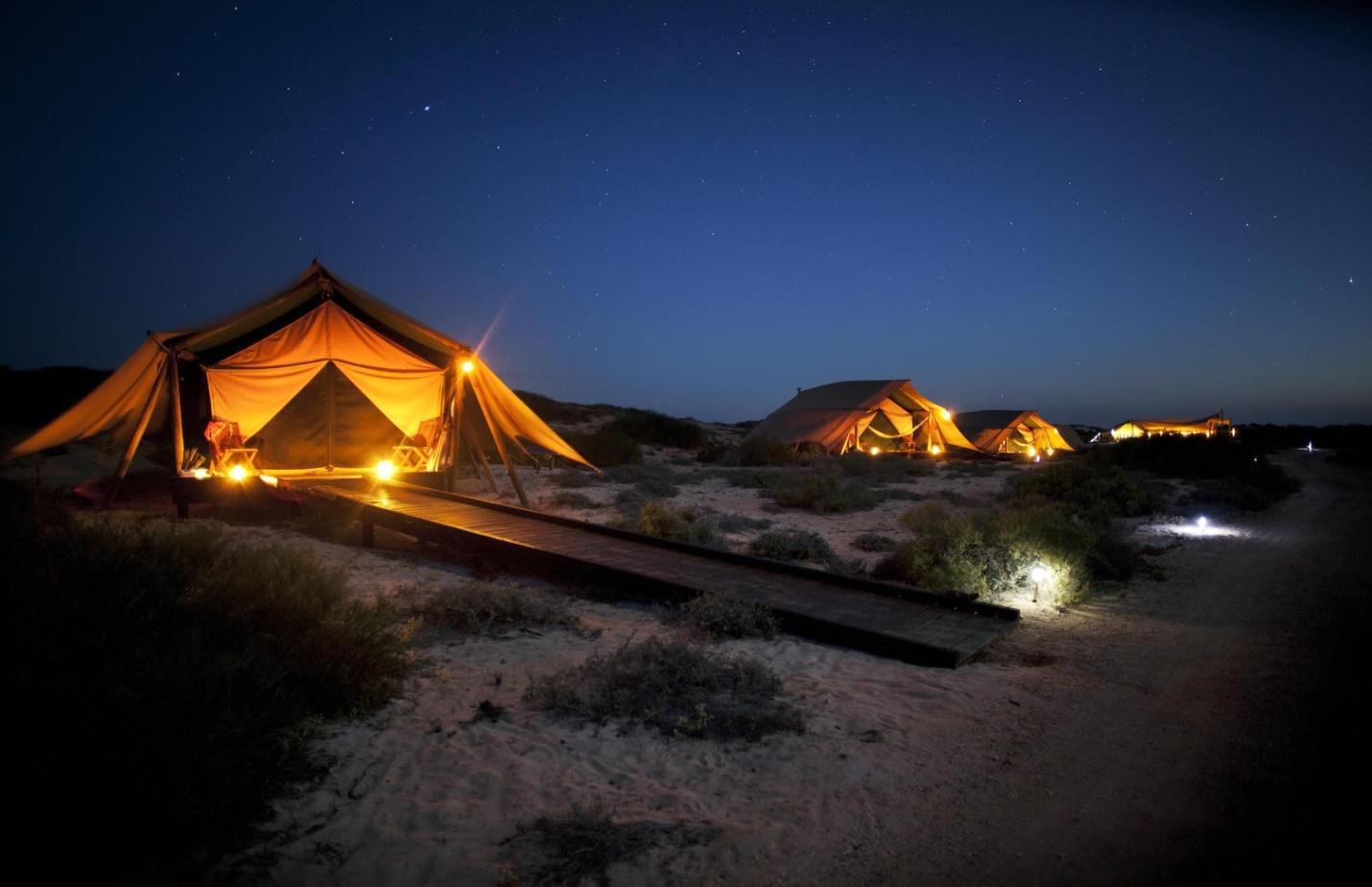 Mách bạn kinh nghiệm cắm trại qua đêm khi đi tour Cô Tô