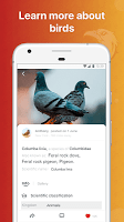 screenshot of Picture Bird - Bird Identifier