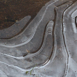 Ice patterns  by Terry Linton - Nature Up Close Water (  )