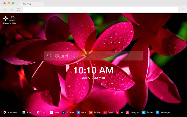 Flowers New Tabs HD Popular Photography Theme