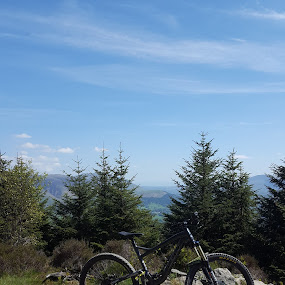 Whinlatter  by Nick Hogg - Transportation Bicycles ( lake district, fitness, cycling, biking, landscape )