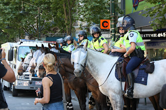 Photo: Year 2 Day 139 - Mounted Police