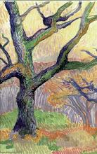 Photo: 1999 Maggie's oak in winter. McFarland, WI. Watercolor.