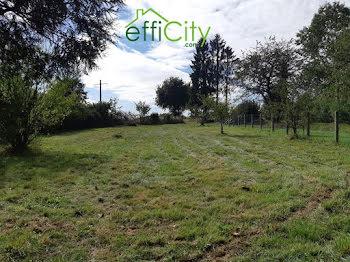 terrain à Montreuil-sur-Ille (35)