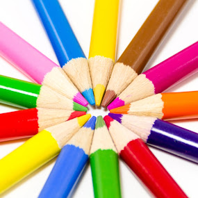 Color pencils on white background by Paul Krug - Artistic Objects Education Objects ( concept, craft, wheel, coloured, wood, colorful, bright, college, yellow, object, circle, education, creativity, drawing, child, colour, draw, life, colourful, student, pink, colored, artist, abstract, office, orange, isolated, creative, sharp, colors, green, align, art, white, kids, close-up, pencil, classroom, wooden, red, school, pattern, blue, color, background, brown, group, rainbow, design, pencils )