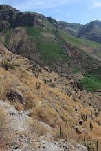 Photo: Contrastes: Ladera de cerro irrigado con cultivos (Fondo) y ladera sin irrigacion Huanca / 18 y 19 de Noviembre (2012) Caylloma