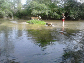 Photo: Nous on aime bien l'eau