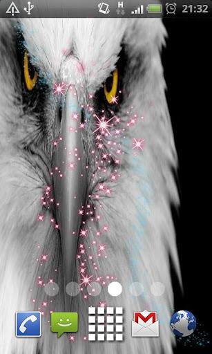 eagle Eyes Live Wallpaper
