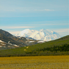 by Jason Kiefer - Landscapes Mountains & Hills ( Alaska, path, nature, landscape )
