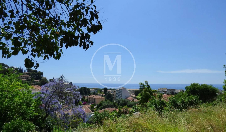 Terrain avec vue panoramique Menton