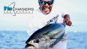 Fin Chasers thumbnail