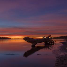 Inner Peace by Laura Gardner - Novices Only Landscapes ( water, nd, sunset, outdoors, fall, missouri river, dusk,  )