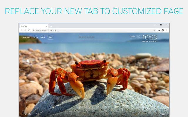 Crab Wallpapers Crabs New Tab - freeaddon.com