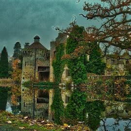 Scotney Castle  by Gjunior Photographer - Buildings & Architecture Public & Historical ( castle, nature, historical, landscape, architecture )