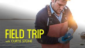 Curtis Stone's Field Trip thumbnail