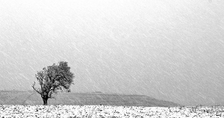 Solo nella tormenta... di Salvatore Gulino