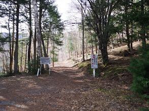 再度林道分岐(左に駐車可能)