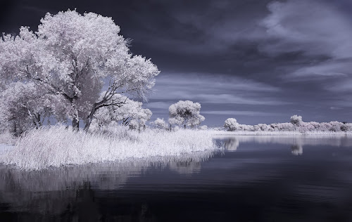 Safford in White by Scott Wood - Landscapes Waterscapes ( ir, d70sir, arizona,  )