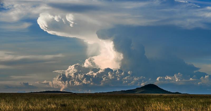 Nuvole nel parco Seregeti in Tanzania di domenicorigon