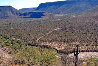 Photo: Valle dei cactus